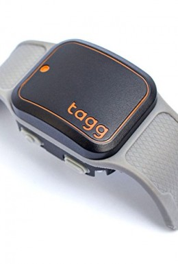 Tagg GPS plus pet tracker 1