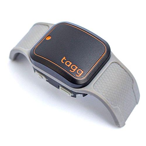 Tagg GPS plus pet tracker 1